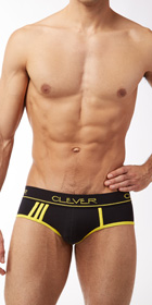 Clever Standford Sport Brief