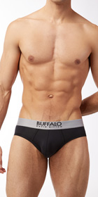 Buffalo Modern Microfiber 2-Pack Brief