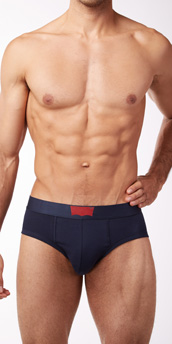 Levi's 200 Series Stretch Cotton 2-Pack Briefs