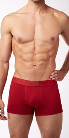 Levi's 200 Series Stretch Cotton 2-Pack Trunks