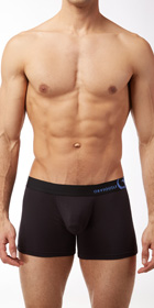 Obviously Naked Essence Boxer Brief