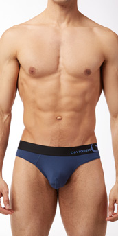 Obviously Naked Essence Hipster Brief